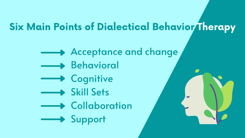 What are the Six Main Points of Dialectical Behavior Therapy