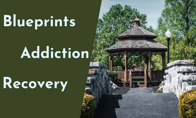 Blueprints for Addiction Recovery